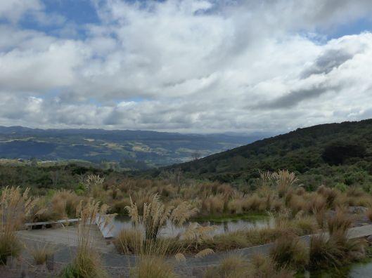 Dunedin 4