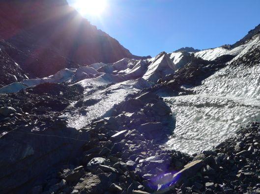Fox Glacier 13