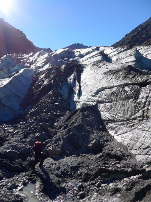 Fox Glacier 14