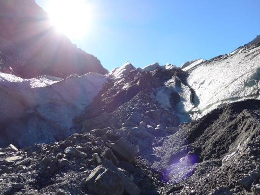 Fox Glacier 16