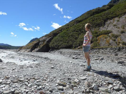 Greymouth to Fox Glacier 19