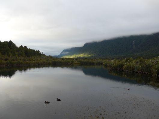 Milford Sound 8