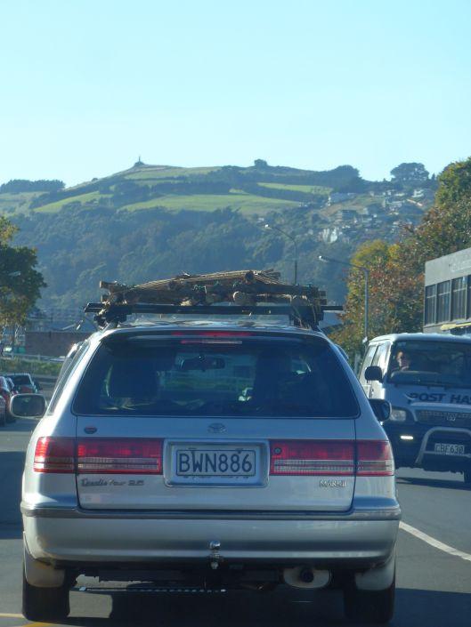 Rafting. Dunedin style.
