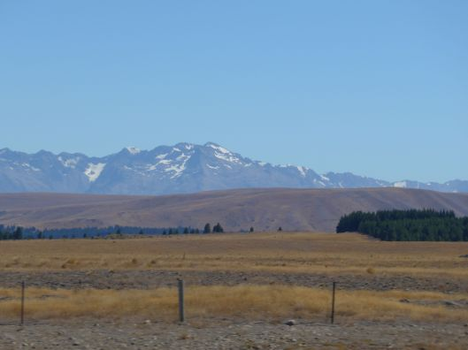 On the Road Dunedin to Lake Tekapo 13